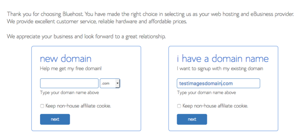 Choose a new domain - bluehost